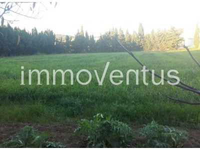 Fantastic farmland with, a tent in very good condition, a well, with light and fully fenced
